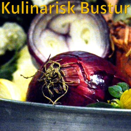 kulinarisk-busturr